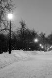 Parco di inverno e le lanterne alla notte Immagini Stock