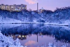 Parco di inverno nella città Immagini Stock Libere da Diritti