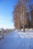 Parco di inverno sotto il Sun Immagine Stock Libera da Diritti