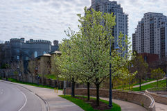 Parco di Ivey, Londra, Ontario fotografia stock