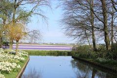 Parco di Keukenhof nei Paesi Bassi Fotografia Stock