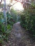 Parco di Melbourne, Florida Fotografia Stock Libera da Diritti