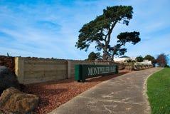 Parco di Montpellier, Geelong, Victoria, Australia Immagine Stock Libera da Diritti