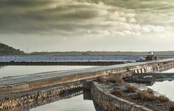 Parco di Natuarl delle saline in Ibiza Fotografie Stock Libere da Diritti