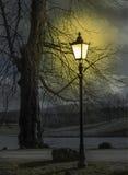 Parco di notte Immagini Stock