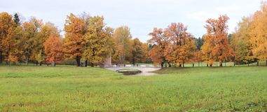 Parco di Pavlovsk all'autunno Panorama Immagine Stock