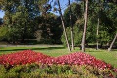 Parco di Planty a Cracovia fotografia stock