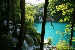 Parco di Plitvica.National Immagini Stock Libere da Diritti