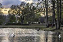 Parco di Pratt nella primavera fotografia stock