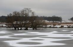 Parco di Richmond nella neve Fotografia Stock Libera da Diritti