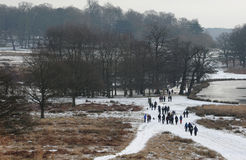 Parco di Richmond nella neve fotografia stock