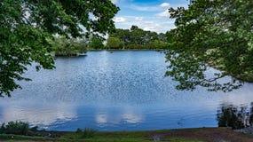 Parco di Richmond un giorno soleggiato immagini stock libere da diritti