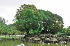 Parco di ricreazione nel giardino del lago Titiwangsa Immagini Stock Libere da Diritti