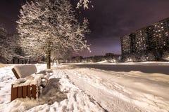 Parco di sera di inverno fotografie stock libere da diritti
