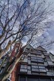 Parco di Shiroi Koibito Fotografia Stock