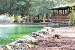 Parco di Sholom in Ocala, Florida Fotografie Stock Libere da Diritti