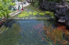 Parco di Shuimogou Immagini Stock