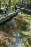Parco di Shuimogou Fotografia Stock