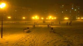 Parco di Snowy con i banchi e le luci di notte, neve che cade, precipitazioni nevose archivi video