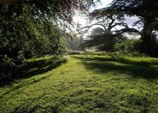 Parco di Stanmer Fotografie Stock