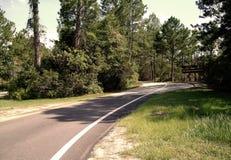 Parco di stato del Mississippi Immagini Stock Libere da Diritti
