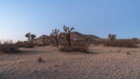 Parco di stato della collina della sella anticlinale a Lancaster, Californa, U.S.A. Immagine Stock Libera da Diritti