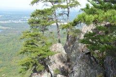 Parco di stato della montagna di Crowders Fotografie Stock