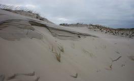Parco di stato della spiaggia dell'isola Miglia delle dune di sabbia e del bea sabbioso bianco Fotografia Stock Libera da Diritti