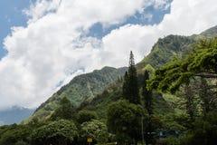 Parco di stato della valle di Iao, Maui ad ovest Immagine Stock Libera da Diritti