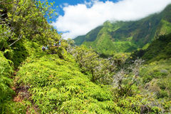 Parco di stato della valle di Iao su Maui Hawai fotografie stock