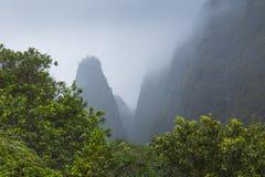 Parco di stato della valle di Iao su Maui Hawai Immagini Stock Libere da Diritti