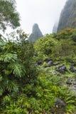 Parco di stato della valle di Iao su Maui Hawai Immagine Stock