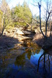 Parco di stato delle colline di Osage Fotografie Stock Libere da Diritti
