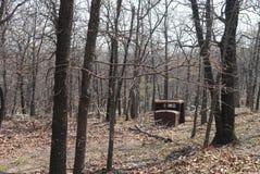 Parco di stato delle colline di Osage Fotografie Stock