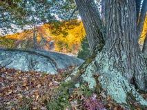 Parco di stato di Harriman, Stato di New York Fotografie Stock Libere da Diritti