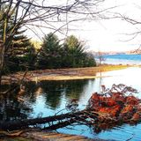Parco di stato di Ludington Fotografie Stock