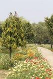 Parco di Swarn Jayanti, Rohini, Nuova Delhi, India Fotografie Stock