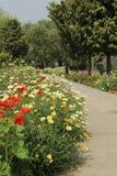 Parco di Swarn Jayanti, Rohini, Nuova Delhi, India immagini stock