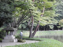 Parco di Tokio Fotografia Stock