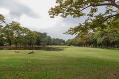 Parco di Vachirabenjatas (putrefazione Fai Park) Bangkok Tailandia fotografie stock