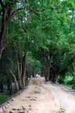 Parco di Vedanthanga immagine stock