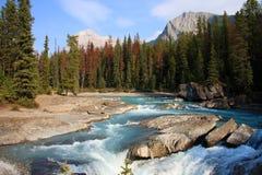 Parco di Yosemite Fotografia Stock