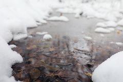 Parco e banchi innevati di inverno Parco e pilastro per alimentarsi Immagine Stock