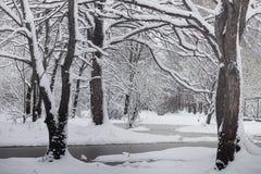 Parco e banchi innevati di inverno Parco e pilastro per alimentarsi Immagini Stock Libere da Diritti