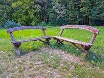 Parco ed alberi naturali e foresta del banco di legno fotografia stock libera da diritti