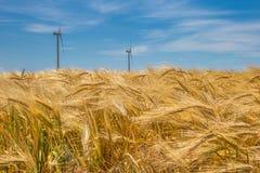 Parco eolico costiero in mezzo ad un giacimento di grano, Botievo, Ucraina Fotografie Stock