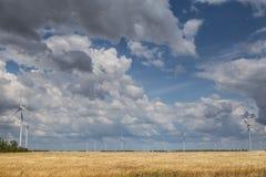 Parco eolico costiero in mezzo ad un giacimento di grano, Botievo, Ucraina Fotografia Stock