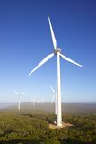 Parco eolico di Albany Fotografie Stock