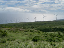 Parco eolico in Maui Hawai Immagine Stock Libera da Diritti