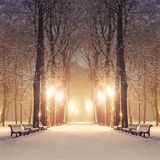 Parco favoloso della città di inverno Fotografia Stock Libera da Diritti